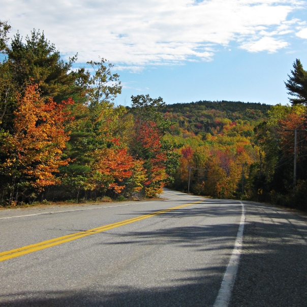 Fall_Colors_Acadia_National_Park