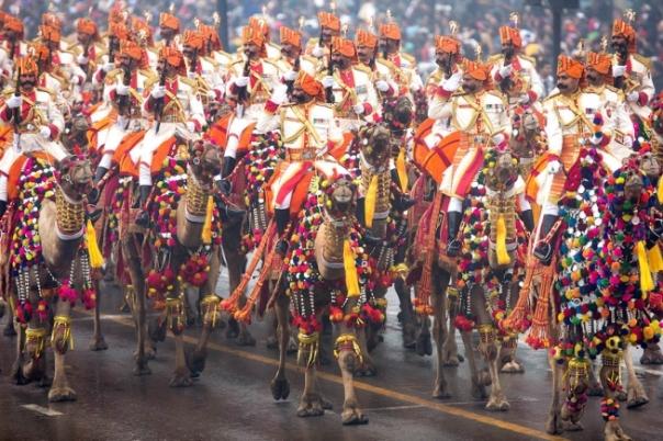 Impressive & Unique - Camel contingent by Border Security Force, India Republic Day 2015