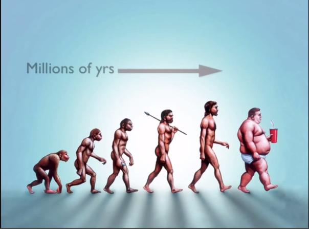 Modern Obesity Epidemic